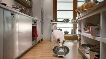 Rachael Ray Nutrish TV Spot, 'Test Kitchen' Featuring Rachael Ray - Thumbnail 4