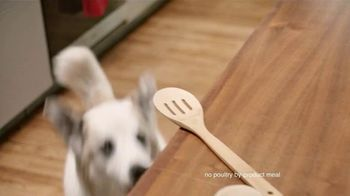 Rachael Ray Nutrish TV Spot, 'Test Kitchen' Featuring Rachael Ray - Thumbnail 5