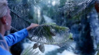 Glade Icy Evergreen Forest TV Spot, 'Frozen 2: Whisper' - Thumbnail 5