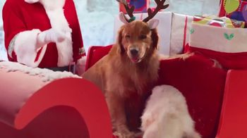 True Touch TV Spot, 'No Pets on the Sled' - Thumbnail 2
