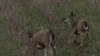 Vortex Optics TV Spot, 'Deer Hunt' - Thumbnail 7