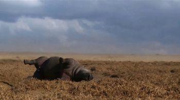 WildAid TV Spot, 'Saved by a Rhino' Featuring Danai Gurira - Thumbnail 4