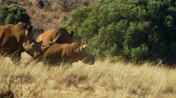 WildAid TV Spot, 'Saved by a Rhino' Featuring Danai Gurira - Thumbnail 6