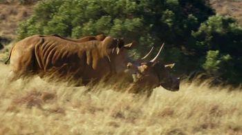 WildAid TV Spot, 'Saved by a Rhino' Featuring Danai Gurira - Thumbnail 7