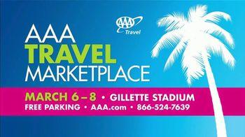 AAA TV Spot, '2020 Travel Marketplace' - Thumbnail 10