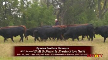 Symens Brothers Limousin Bull & Female Production Sale TV Spot, 'Treats Cattle and Customers Right' - Thumbnail 3