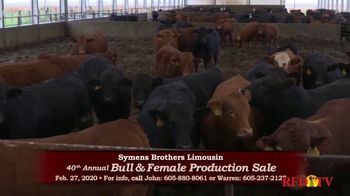 Symens Brothers Limousin Bull & Female Production Sale TV Spot, 'Treats Cattle and Customers Right' - Thumbnail 6