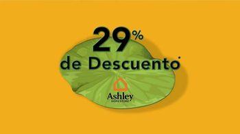 Ashley HomeStore Venta del Año Bisiesto TV Spot, 'Cada cuatro años' [Spanish] - Thumbnail 2