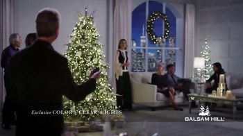 Balsam Hill Early Black Friday Deals TV Spot, 'This Tree: Up to 40 Percent Off' - Thumbnail 2