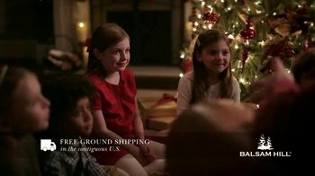 Balsam Hill Early Black Friday Deals TV Spot, 'This Tree: Up to 40 Percent Off' - Thumbnail 4