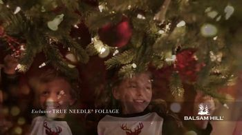 Balsam Hill Early Black Friday Deals TV Spot, 'This Tree: Up to 40 Percent Off' - Thumbnail 5