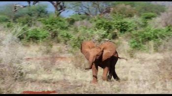 Apple TV+ TV Spot, 'The Elephant Queen' - Thumbnail 5