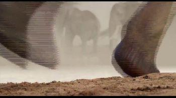 Apple TV+ TV Spot, 'The Elephant Queen' - Thumbnail 7