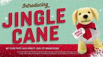 Introducing Jingle Cane thumbnail