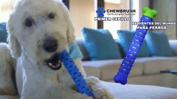 Chewbrush TV Spot, 'Doble oferta' [Spanish] - Thumbnail 2