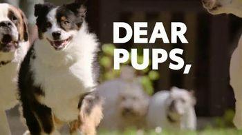 2019 Toyota Highlander TV Spot, 'Dear Pups' [T1] - Thumbnail 2