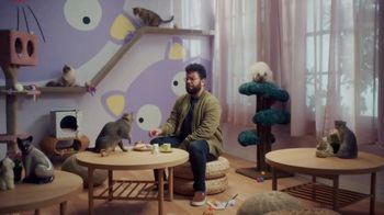 Jack in the Box White Cheddar Cheeseburger Combo TV Spot, 'Cat Cafe'