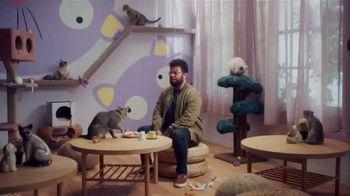 Jack in the Box White Cheddar Cheeseburger Combo TV Spot, 'Café lleno de gatos' [Spanish] - Thumbnail 1