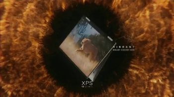 Dell XPS 13 TV Spot, 'Black Friday: See More' Song by Desi Valentine - Thumbnail 6
