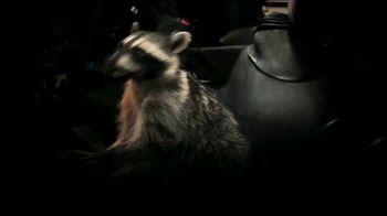 GEICO TV Spot, 'Raccoons Sequel: Heist' - Thumbnail 6