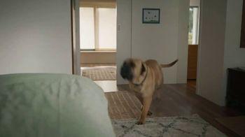 Gain Ultra Flings! TV Spot, 'Michelangelo'