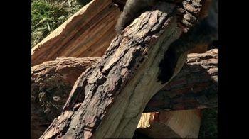 GEICO TV Spot, 'Woodchucks Original' - Thumbnail 5