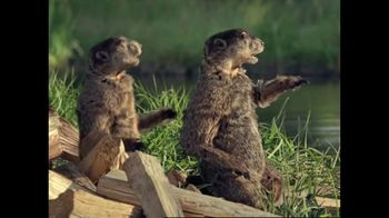 GEICO TV Spot, 'Woodchucks Original'