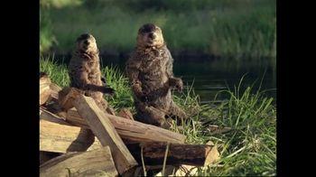 GEICO TV Spot, 'Woodchucks Original' - Thumbnail 8