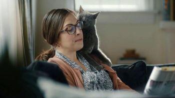 Sheba TV Spot, 'The Fall'