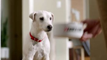 Purina TV Spot, 'Pet Food Without Artificial Flavors or Preservatives'