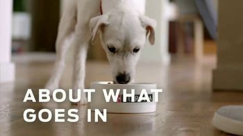 Purina TV Spot, 'Pet Food Without Artificial Flavors or Preservatives' - Thumbnail 4