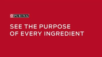 Purina TV Spot, 'Pet Food Without Artificial Flavors or Preservatives' - Thumbnail 6