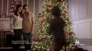 Balsam Hill Black Friday Deals TV Spot, 'Holidays: Memory Keeper: Up to 50 Percent Off'
