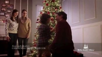 Balsam Hill Black Friday Deals TV Spot, 'Holidays: Memory Keeper: Up to 50 Percent Off' - Thumbnail 4