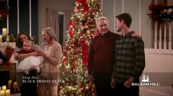 Balsam Hill Black Friday Deals TV Spot, 'Holidays: Memory Keeper: Up to 50 Percent Off' - Thumbnail 5