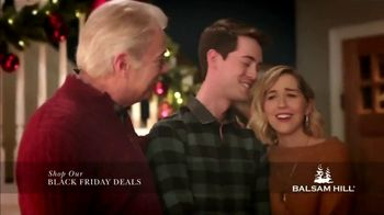 Balsam Hill Black Friday Deals TV Spot, 'Holidays: Memory Keeper: Up to 50 Percent Off' - Thumbnail 6