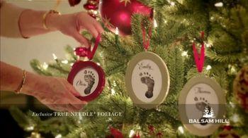 Balsam Hill Black Friday Deals TV Spot, 'Holidays: Memory Keeper: Up to 50 Percent Off' - Thumbnail 8