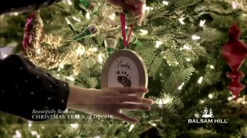 Balsam Hill Black Friday Deals TV Spot, 'Holidays: Memory Keeper: Up to 50 Percent Off' - 1 commercial airings