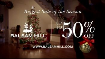 Balsam Hill Biggest Sale of the Season TV Spot, 'This Tree: Up to 50 Percent Off' - Thumbnail 8