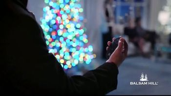 Balsam Hill Biggest Sale of the Season TV Spot, 'This Tree: Up to 50 Percent Off' - Thumbnail 2