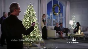 Balsam Hill Biggest Sale of the Season TV Spot, 'This Tree: Up to 50 Percent Off'