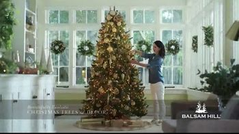 Balsam Hill Biggest Sale of the Season TV Spot, 'This Tree: Up to 50 Percent Off' - Thumbnail 5