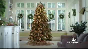 Balsam Hill Biggest Sale of the Season TV Spot, 'This Tree: Up to 50% Off'