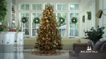 Balsam Hill Black Friday Deals TV Spot, 'This Tree: Up to 50 Percent Off' - Thumbnail 1