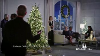 Balsam Hill Black Friday Deals TV Spot, 'This Tree: Up to 50 Percent Off'