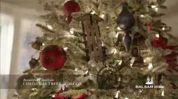 Balsam Hill Black Friday Deals TV Spot, 'This Tree: Up to 50 Percent Off' - Thumbnail 4