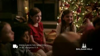 Balsam Hill Black Friday Deals TV Spot, 'This Tree: Up to 50 Percent Off' - Thumbnail 6