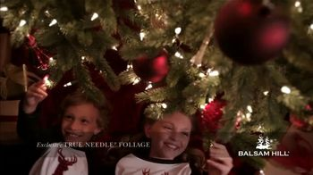 Balsam Hill Black Friday Deals TV Spot, 'This Tree: Up to 50 Percent Off' - Thumbnail 7
