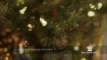 Balsam Hill Black Friday Deals TV Spot, 'This Tree: Up to 50 Percent Off' - Thumbnail 8
