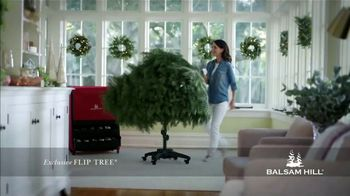 Balsam Hill Black Friday Deals TV Spot, 'This Tree: Up to 50 Percent Off' - Thumbnail 9